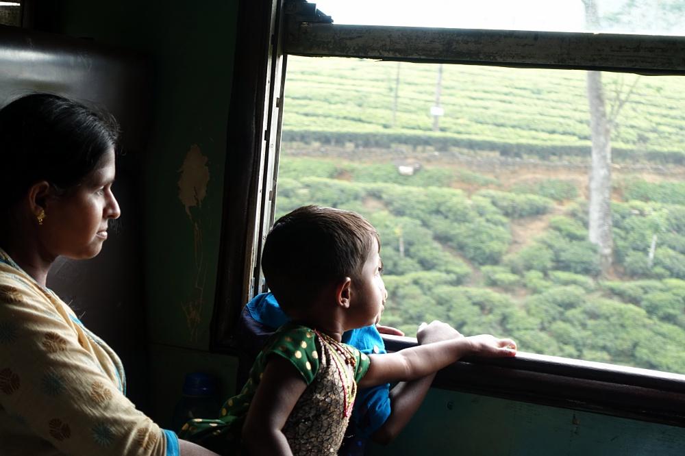 Unterkünfte, Essen und Highlights in Sri Lanka – Meine Tipps zusammengefasst